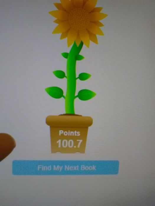 100 point achievement on accelerated reader program